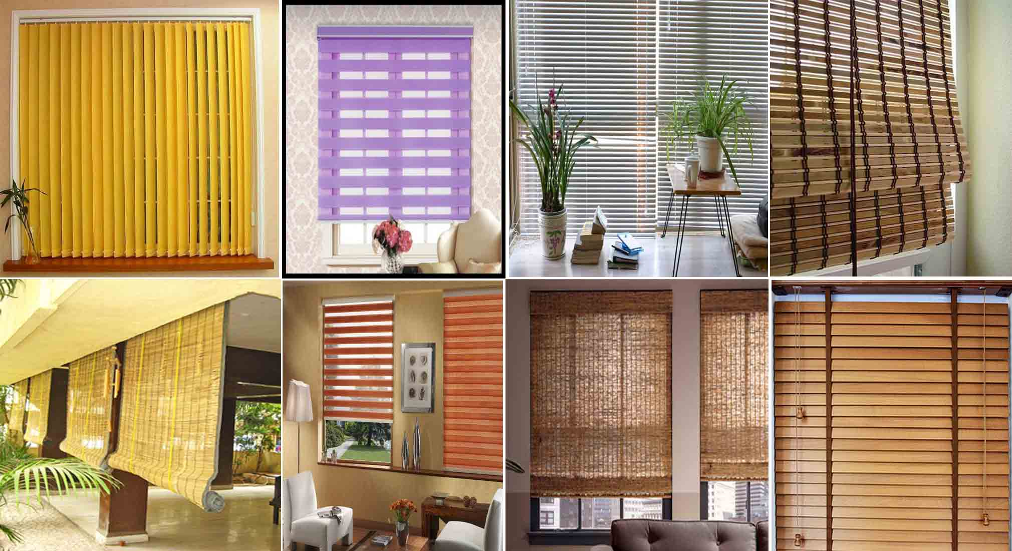 International Directory | fordern for Bamboo Curtains Kerala  110zmd